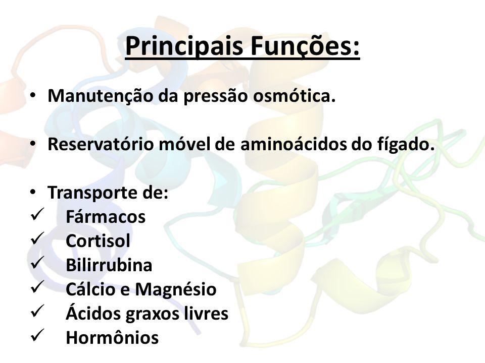 Principais Funções: Manutenção da pressão osmótica. Reservatório móvel de aminoácidos do fígado. Transporte de: Fármacos Cortisol Bilirrubina Cálcio e