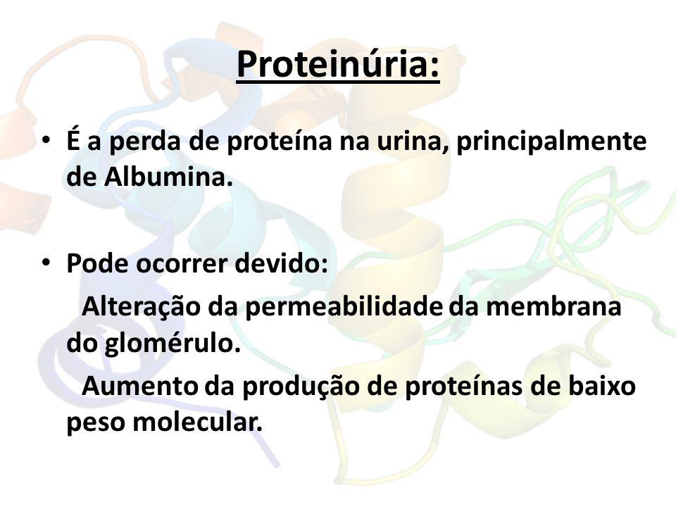 Proteinúria: É a perda de proteína na urina, principalmente de Albumina. Pode ocorrer devido: Alteração da permeabilidade da membrana do glomérulo. Au