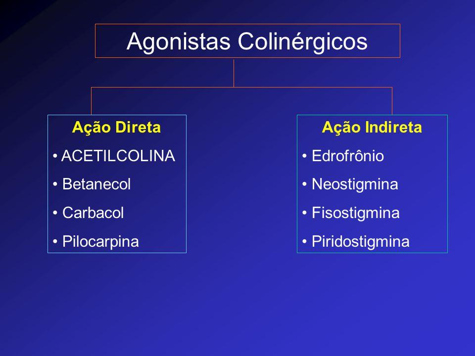 Agonistas Colinérgicos Ação Direta ACETILCOLINA Betanecol Carbacol Pilocarpina Ação Indireta Edrofrônio Neostigmina Fisostigmina Piridostigmina