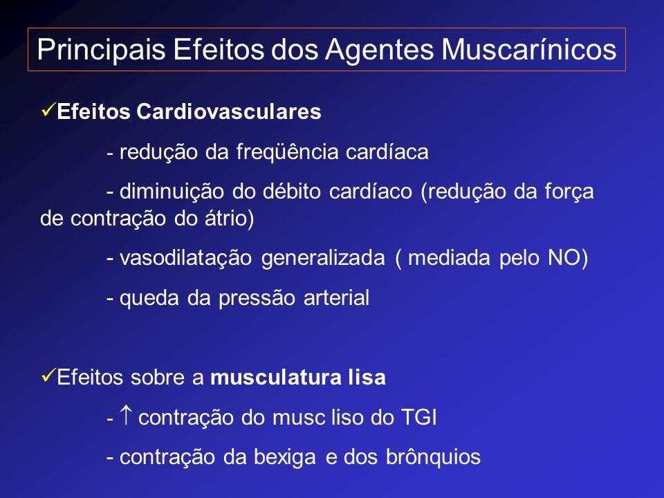 Principais Efeitos dos Agentes Muscarínicos Efeitos Cardiovasculares - redução da freqüência cardíaca - diminuição do débito cardíaco (redução da forç