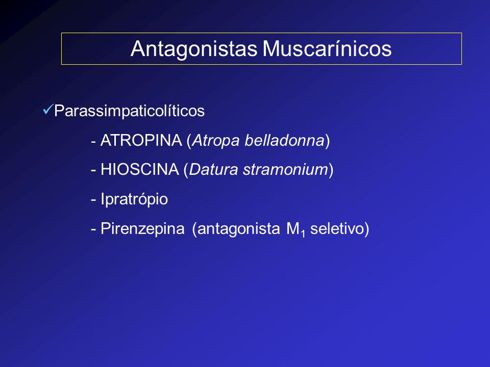 Principais efeitos da ATROPINA Inibição das secreções (lacrimais, salivares, brônquicas e sudoríparas), com aumento da temperatura corpórea Efeitos sobre a freqüência cardíaca - taquicardia (bloq dos receptores musc cardíacos) - doses baixas bradicardia paradoxal (ef central) - não há alteração na pressão arterial Efeitos oculares - midríase - paralisia da acomodação do olho (cicloplegia) - pode ocorrer  da pressão intraocular