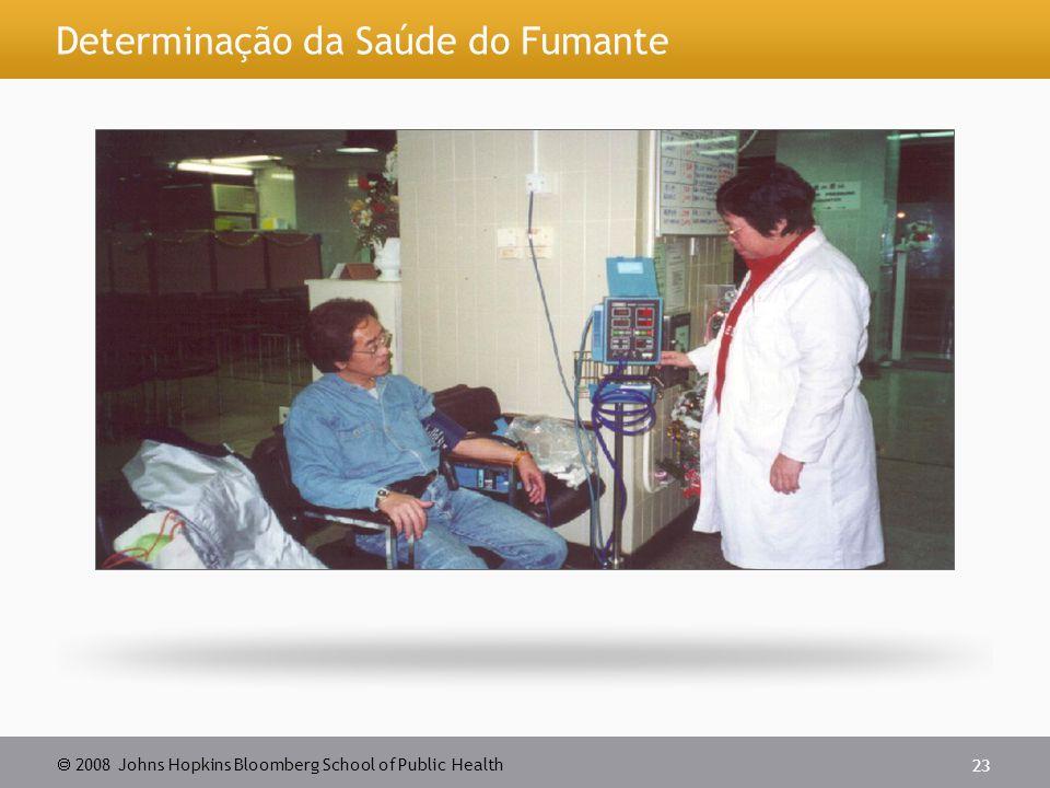 2008 Johns Hopkins Bloomberg School of Public Health 23 Determinação da Saúde do Fumante