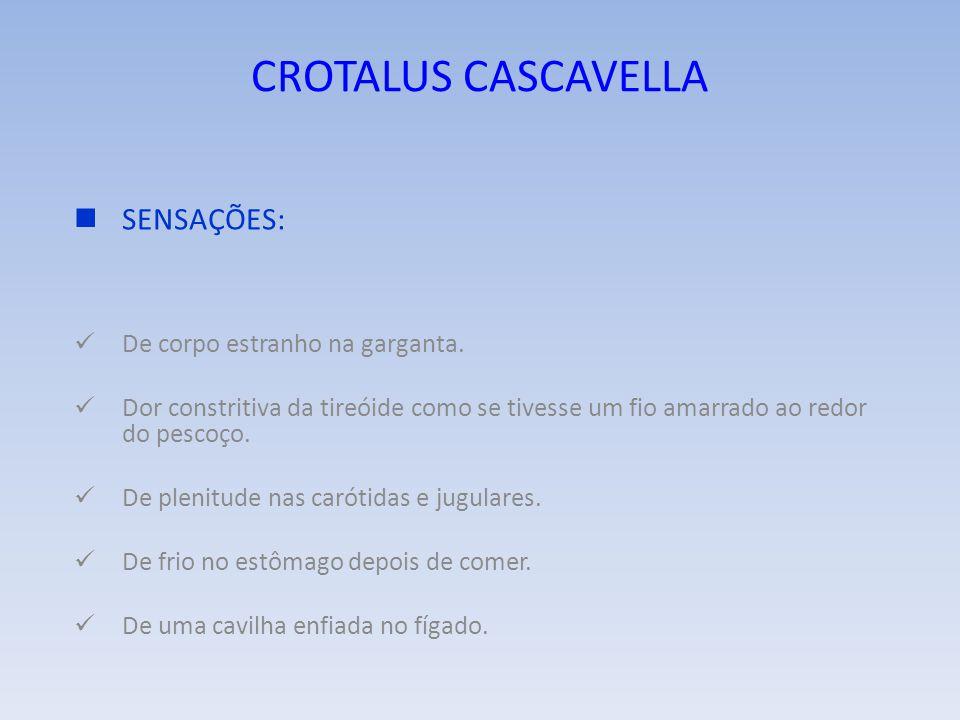 CROTALUS CASCAVELLA SENSAÇÕES De algo vivo caminhando dentro da cabeça. De um ferro em brasa cravado no vértex.