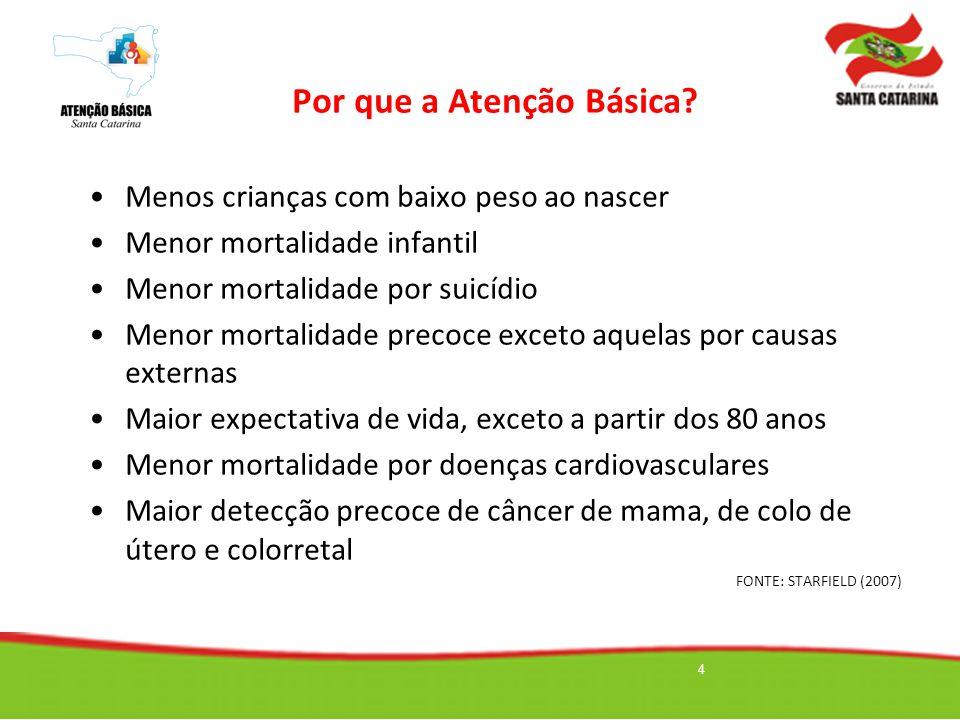 Por que a Atenção Básica? Menos crianças com baixo peso ao nascer Menor mortalidade infantil Menor mortalidade por suicídio Menor mortalidade precoce