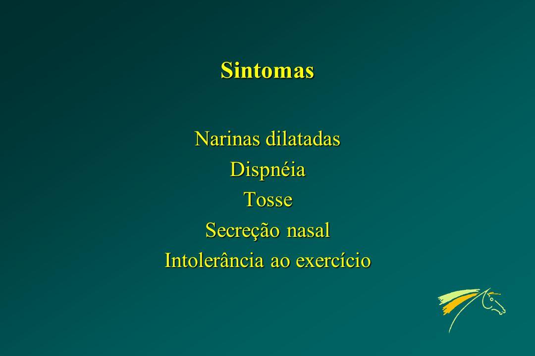 Sintomas Narinas dilatadas DispnéiaTosse Secreção nasal Intolerância ao exercício