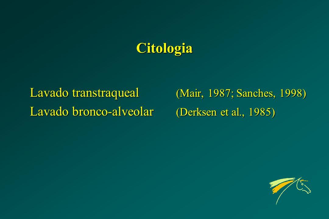 Citologia Lavado transtraqueal (Mair, 1987; Sanches, 1998) Lavado bronco-alveolar (Derksen et al., 1985)