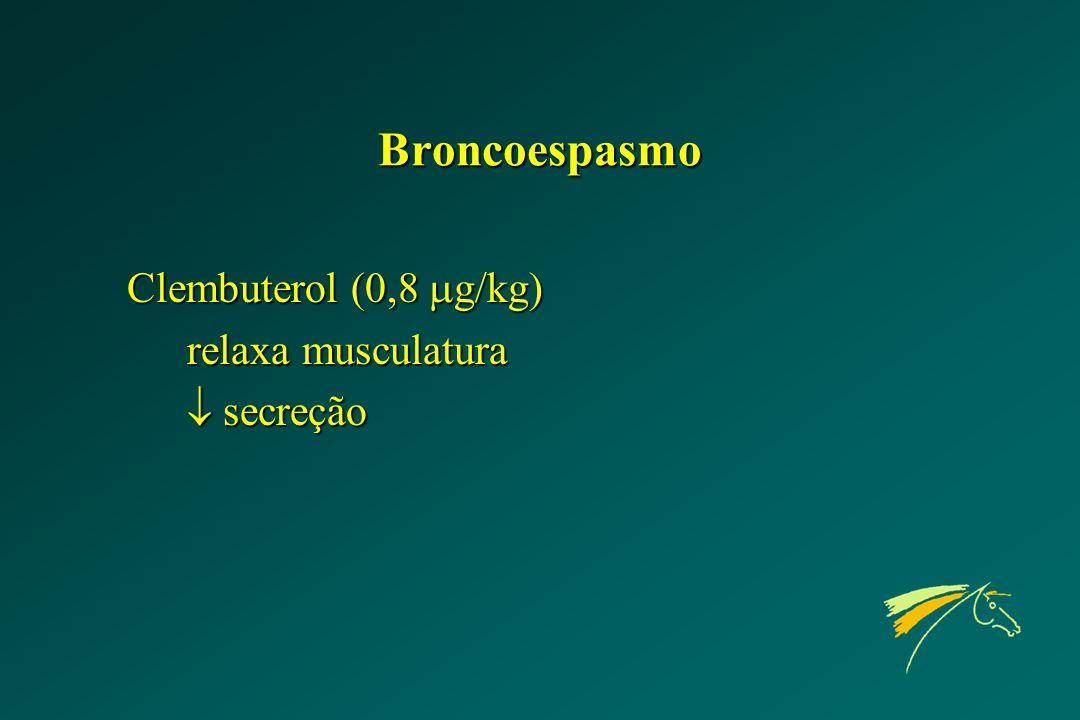 Broncoespasmo Clembuterol (0,8  g/kg) relaxa musculatura  secreção