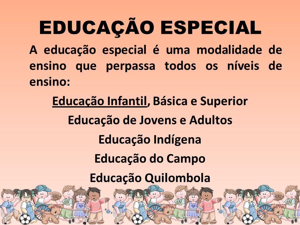 EDUCAÇÃO ESPECIAL A educação especial é uma modalidade de ensino que perpassa todos os níveis de ensino: Educação Infantil, Básica e Superior Educação