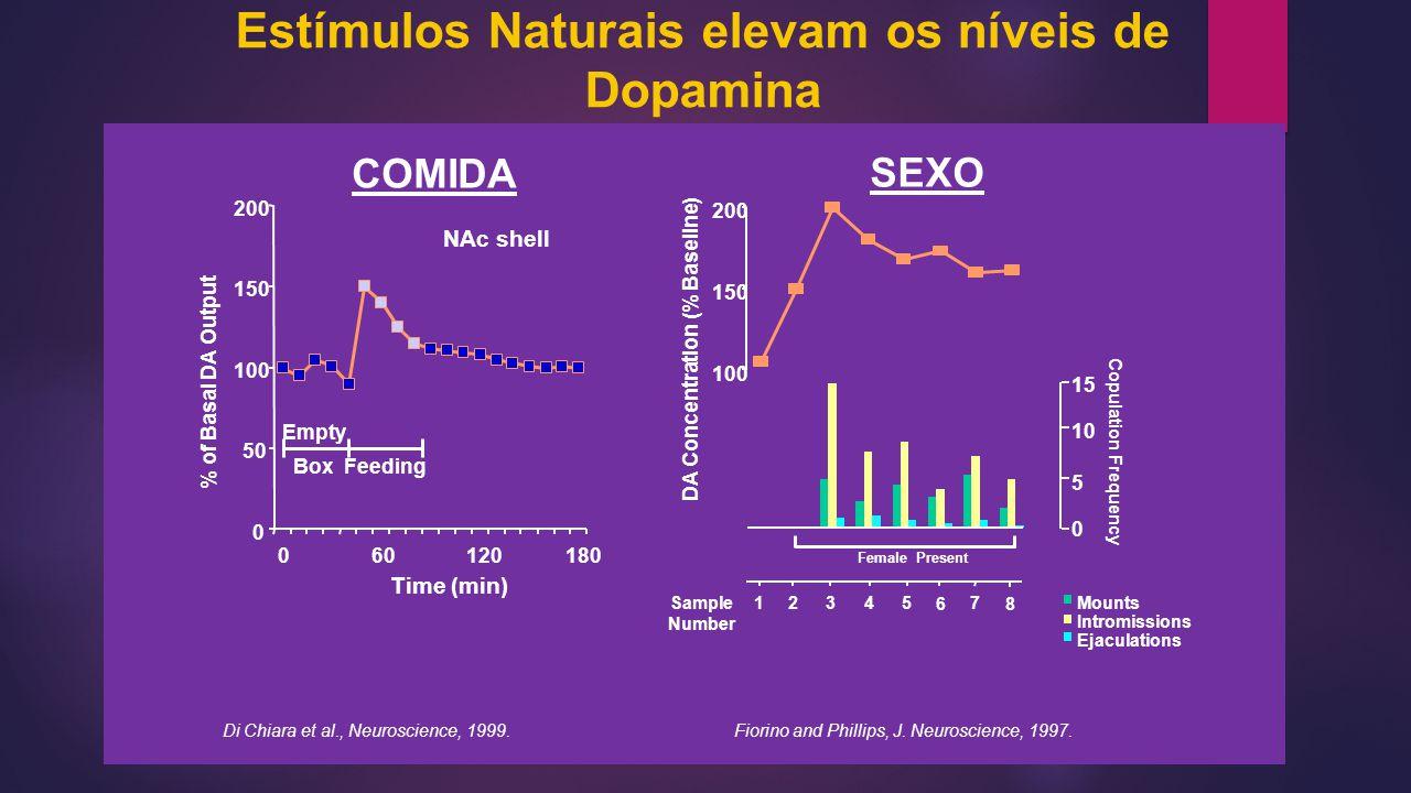 0 50 100 150 200 060120180 Time (min) % of Basal DA Output NAc shell Empty BoxFeeding Di Chiara et al., Neuroscience, 1999. COMIDA Mounts Intromission
