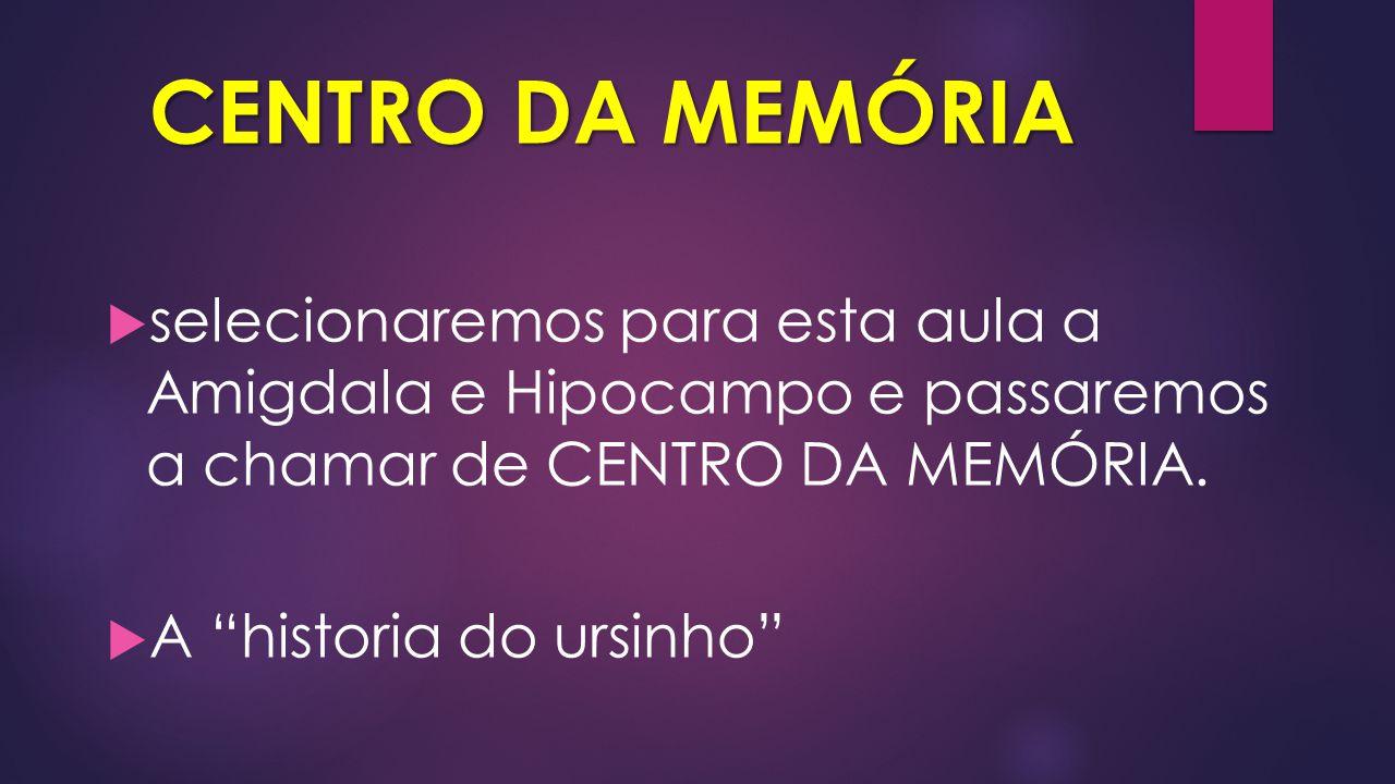 """CENTRO DA MEMÓRIA  selecionaremos para esta aula a Amigdala e Hipocampo e passaremos a chamar de CENTRO DA MEMÓRIA.  A """"historia do ursinho"""""""