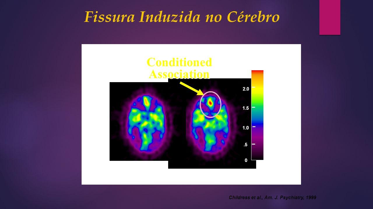 Nature Video Cocaine Video Conditioned Association Conditioned Association 1.5 0.5 1.0 2.0 2.5 Fissura Induzida no Cérebro Childress et al., Am. J. Ps