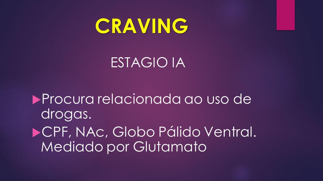 CRAVING ESTAGIO IA  Procura relacionada ao uso de drogas.  CPF, NAc, Globo Pálido Ventral. Mediado por Glutamato