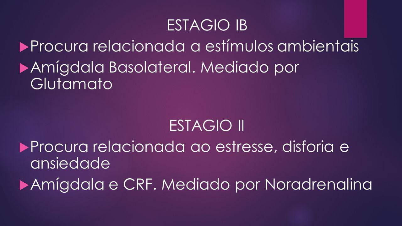 ESTAGIO IB  Procura relacionada a estímulos ambientais  Amígdala Basolateral. Mediado por Glutamato ESTAGIO II  Procura relacionada ao estresse, di