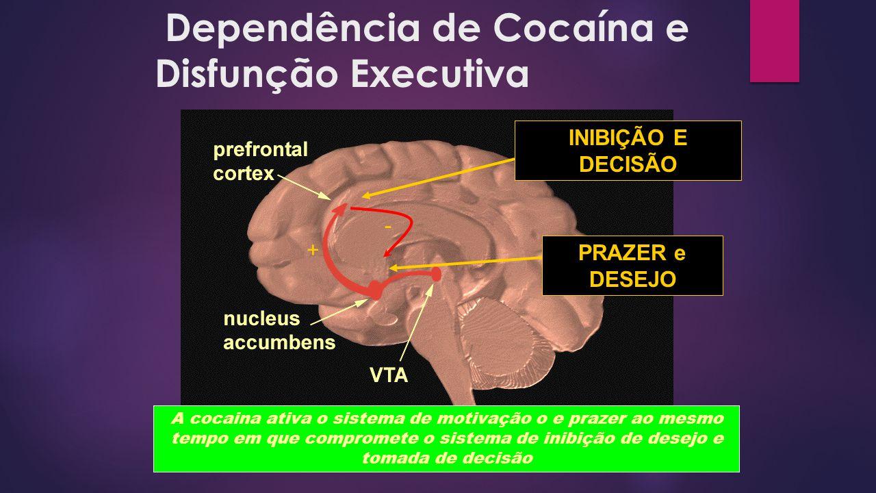 Dependência de Cocaína e Disfunção Executiva PRAZER e DESEJO INIBIÇÃO E DECISÃO + - A cocaina ativa o sistema de motivação o e prazer ao mesmo tempo e