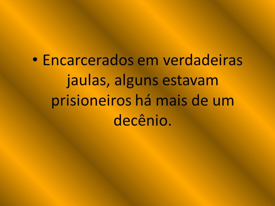 Encarcerados em verdadeiras jaulas, alguns estavam prisioneiros há mais de um decênio.