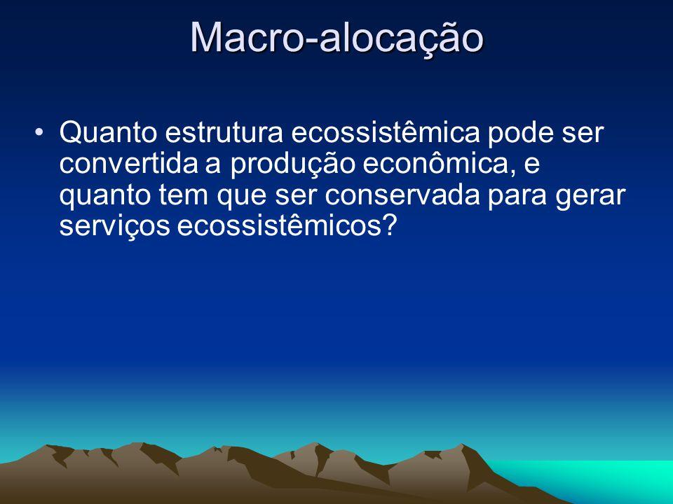 Macro-alocação Quanto estrutura ecossistêmica pode ser convertida a produção econômica, e quanto tem que ser conservada para gerar serviços ecossistêm