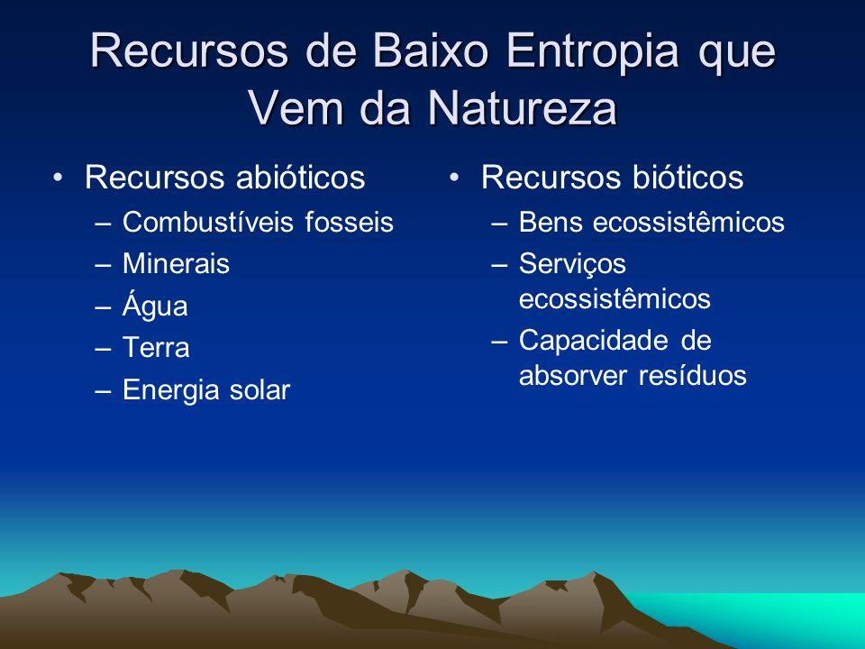 Recursos de Baixo Entropia que Vem da Natureza Recursos abióticos –Combustíveis fosseis –Minerais –Água –Terra –Energia solar Recursos bióticos –Bens ecossistêmicos –Serviços ecossistêmicos –Capacidade de absorver resíduos