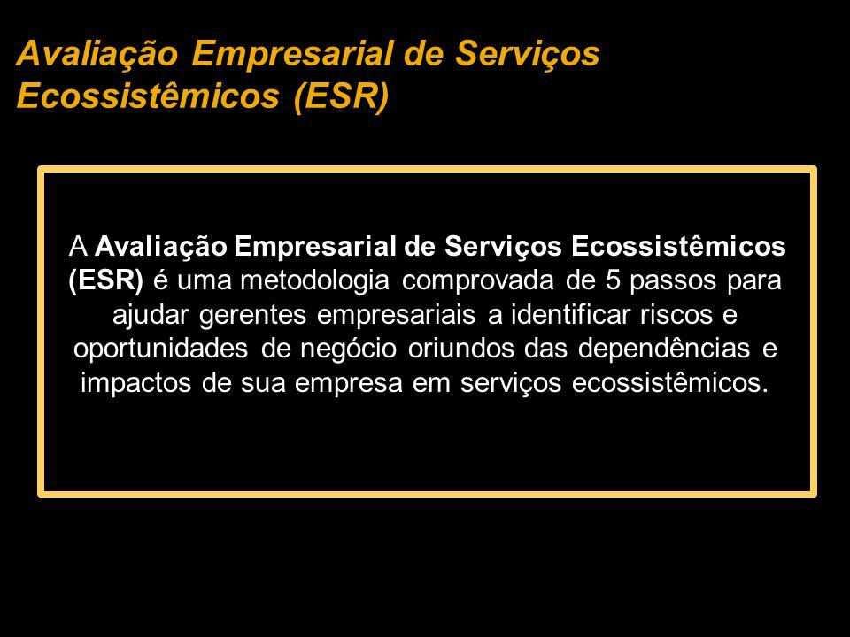 A Avaliação Empresarial de Serviços Ecossistêmicos (ESR) é uma metodologia comprovada de 5 passos para ajudar gerentes empresariais a identificar riscos e oportunidades de negócio oriundos das dependências e impactos de sua empresa em serviços ecossistêmicos.