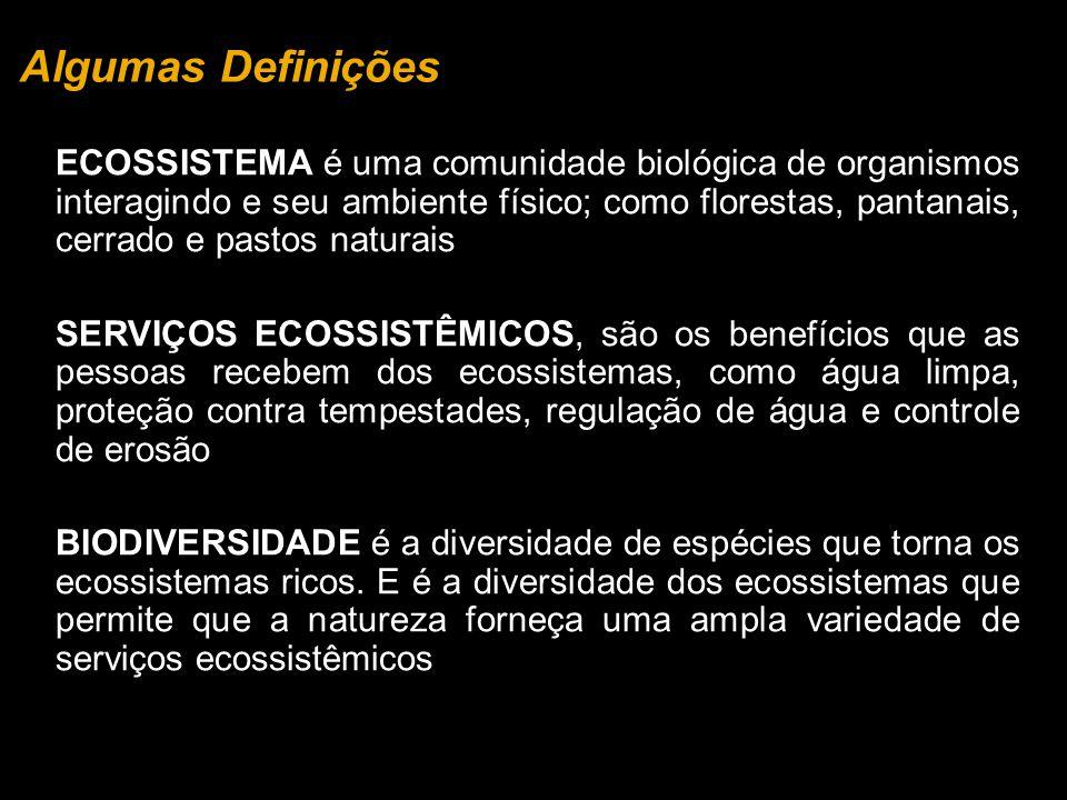 Algumas Definições ECOSSISTEMA é uma comunidade biológica de organismos interagindo e seu ambiente físico; como florestas, pantanais, cerrado e pastos naturais SERVIÇOS ECOSSISTÊMICOS, são os benefícios que as pessoas recebem dos ecossistemas, como água limpa, proteção contra tempestades, regulação de água e controle de erosão BIODIVERSIDADE é a diversidade de espécies que torna os ecossistemas ricos.