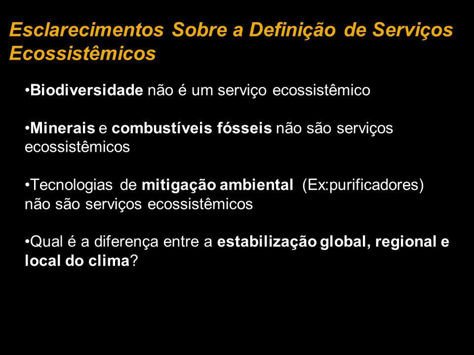 Esclarecimentos Sobre a Definição de Serviços Ecossistêmicos Biodiversidade não é um serviço ecossistêmico Minerais e combustíveis fósseis não são serviços ecossistêmicos Tecnologias de mitigação ambiental (Ex:purificadores) não são serviços ecossistêmicos Qual é a diferença entre a estabilização global, regional e local do clima