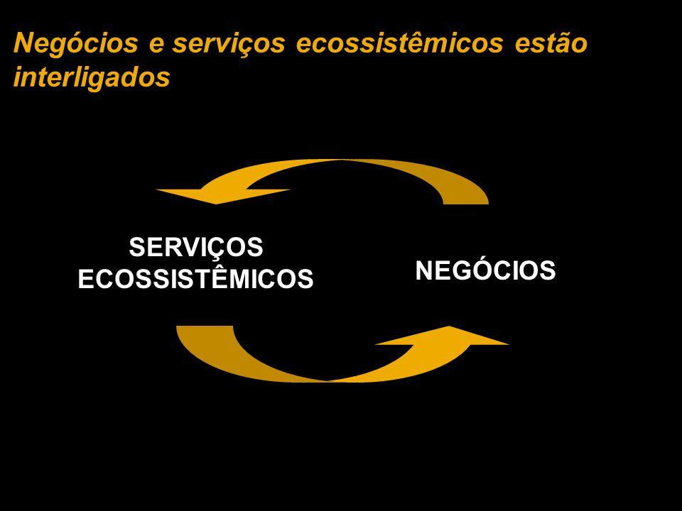 Negócios e serviços ecossistêmicos estão interligados SERVIÇOS ECOSSISTÊMICOS NEGÓCIOS