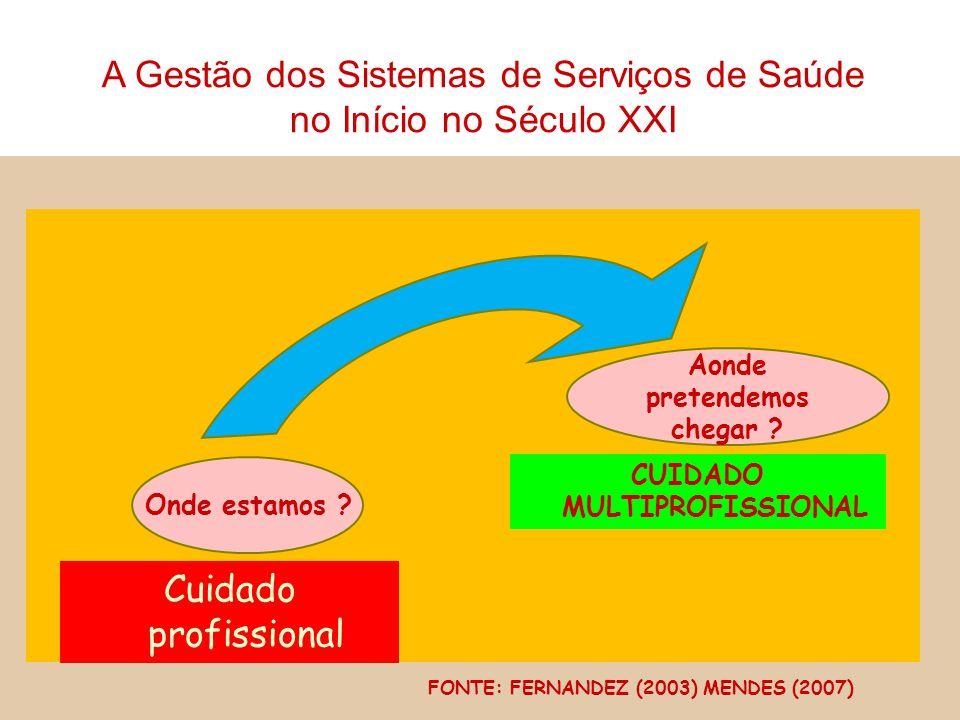 Onde estamos ? Cuidado profissional Aonde pretendemos chegar ? CUIDADO MULTIPROFISSIONAL FONTE: FERNANDEZ (2003) MENDES (2007) A Gestão dos Sistemas d