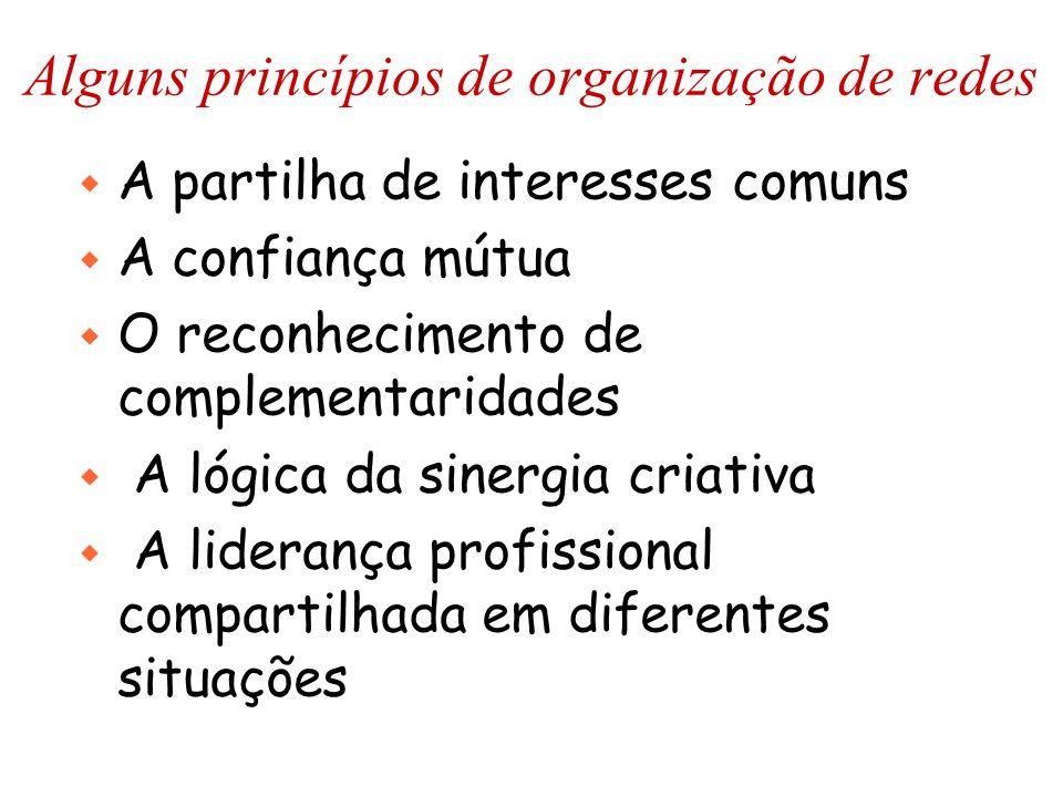 Alguns princípios de organização de redes w A partilha de interesses comuns w A confiança mútua w O reconhecimento de complementaridades w A lógica da sinergia criativa w A liderança profissional compartilhada em diferentes situações