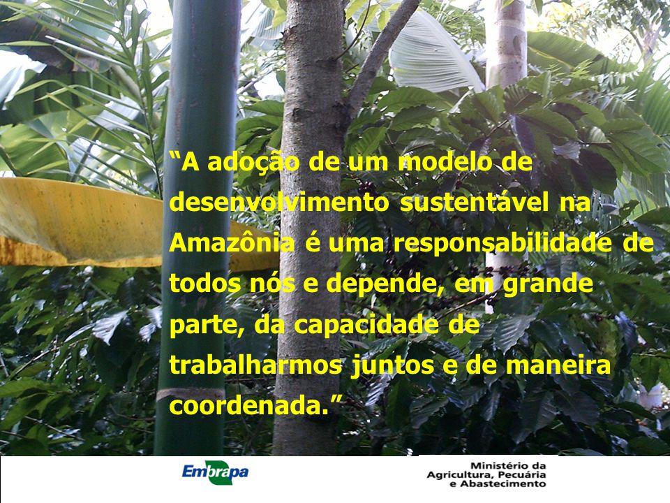"""""""A adoção de um modelo de desenvolvimento sustentável na Amazônia é uma responsabilidade de todos nós e depende, em grande parte, da capacidade de tra"""