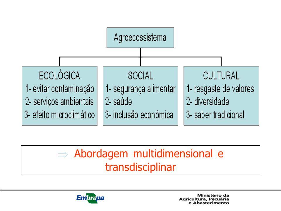 O que são Sistemas Agroflorestais.