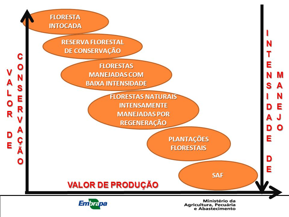 FLORESTA INTOCADA RESERVA FLORESTAL DE CONSERVAÇÃO FLORESTAS MANEJADAS COM BAIXA INTENSIDADE FLORESTAS NATURAIS INTENSAMENTE MANEJADAS POR REGENERAÇÃO