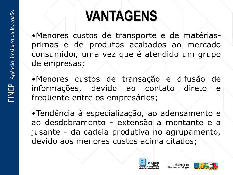 Menores custos de transporte e de matérias- primas e de produtos acabados ao mercado consumidor, uma vez que é atendido um grupo de empresas; Menores
