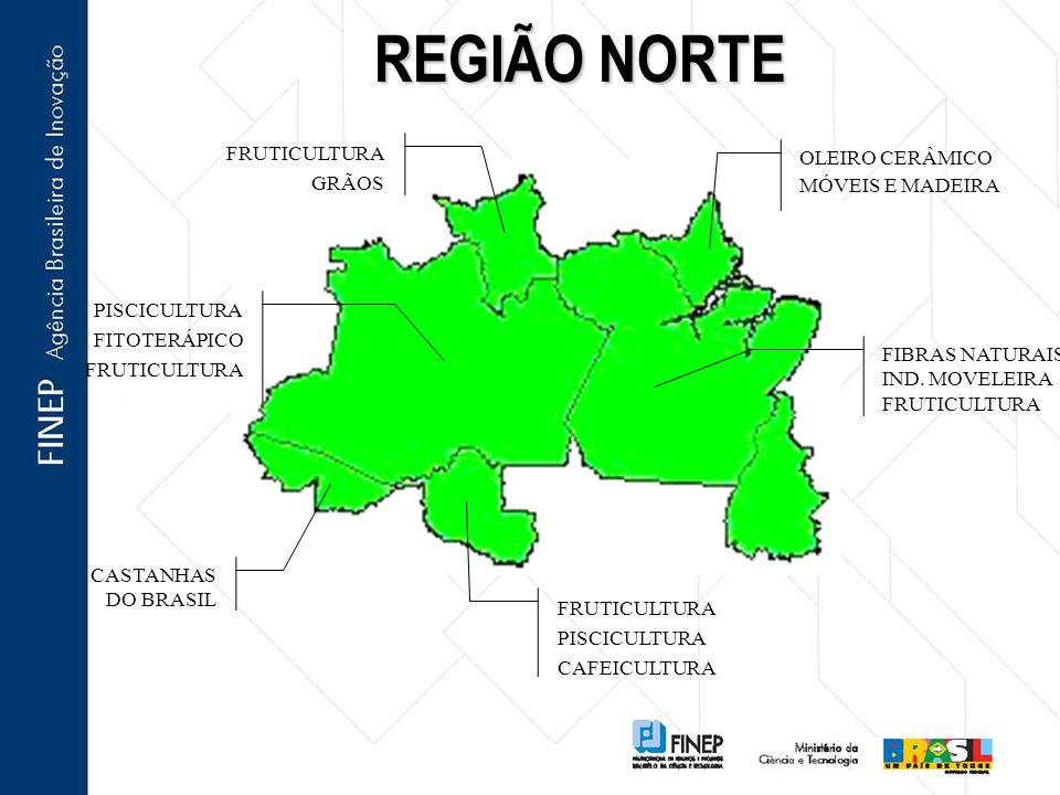 REGIÃO NORTE CASTANHAS DO BRASIL FRUTICULTURA PISCICULTURA CAFEICULTURA OLEIRO CERÂMICO MÓVEIS E MADEIRA FIBRAS NATURAIS IND. MOVELEIRA FRUTICULTURA P