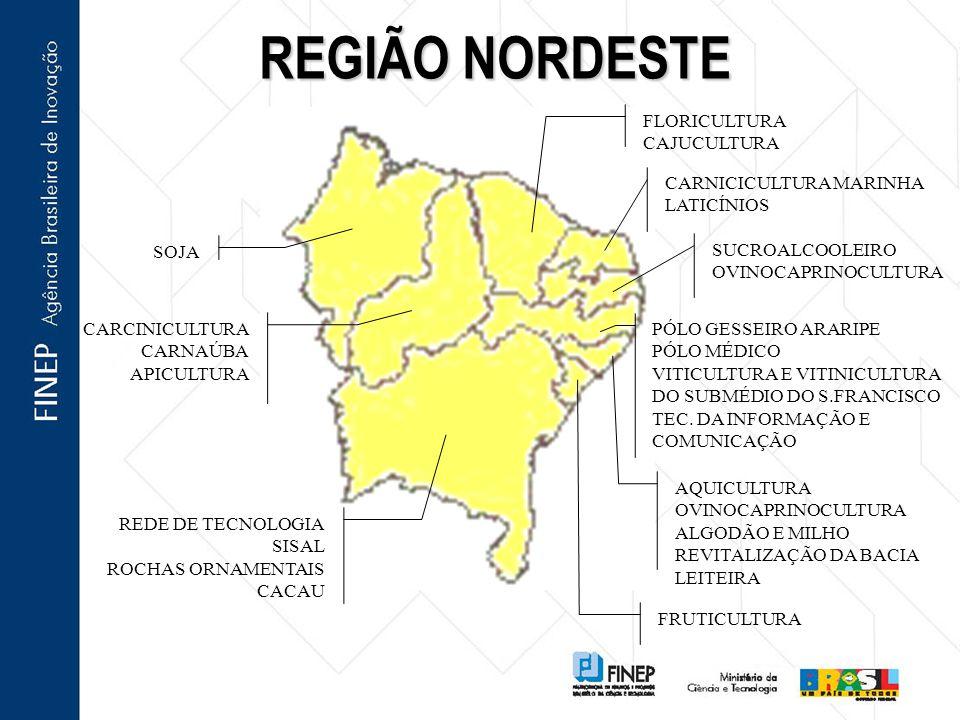 REGIÃO NORDESTE REDE DE TECNOLOGIA SISAL ROCHAS ORNAMENTAIS CACAU FLORICULTURA CAJUCULTURA SUCROALCOOLEIRO OVINOCAPRINOCULTURA PÓLO GESSEIRO ARARIPE PÓLO MÉDICO VITICULTURA E VITINICULTURA DO SUBMÉDIO DO S.FRANCISCO TEC.