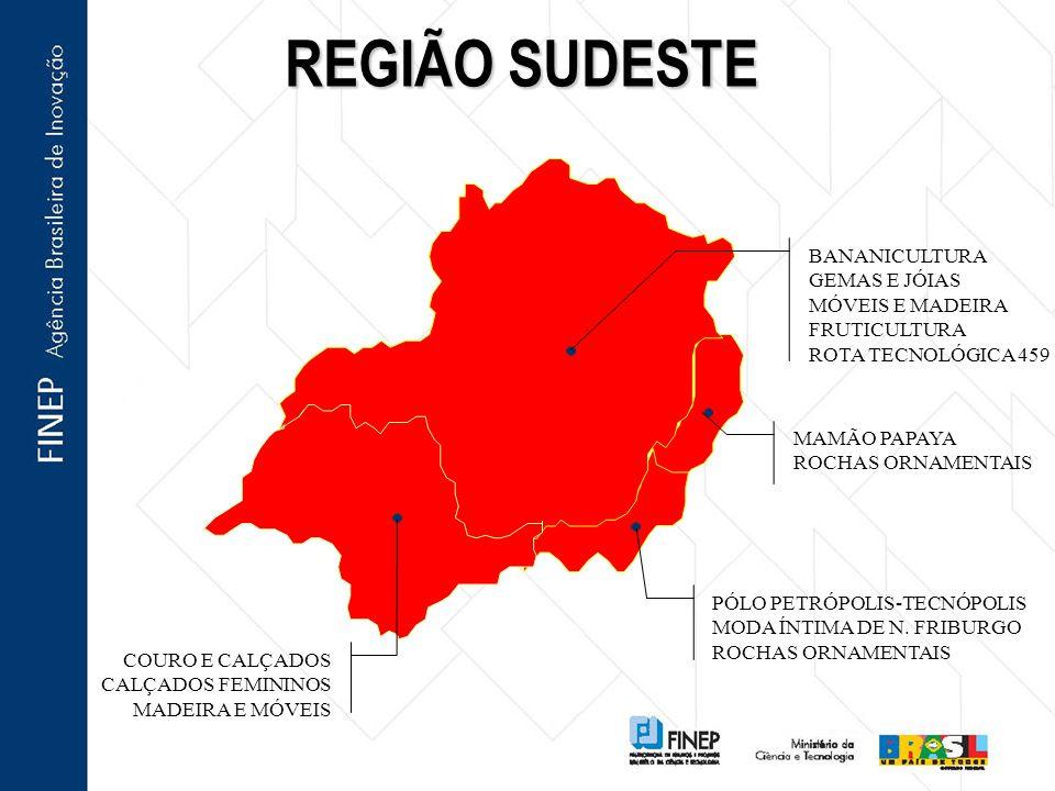 REGIÃO SUDESTE BANANICULTURA GEMAS E JÓIAS MÓVEIS E MADEIRA FRUTICULTURA ROTA TECNOLÓGICA 459 MAMÃO PAPAYA ROCHAS ORNAMENTAIS PÓLO PETRÓPOLIS-TECNÓPOLIS MODA ÍNTIMA DE N.