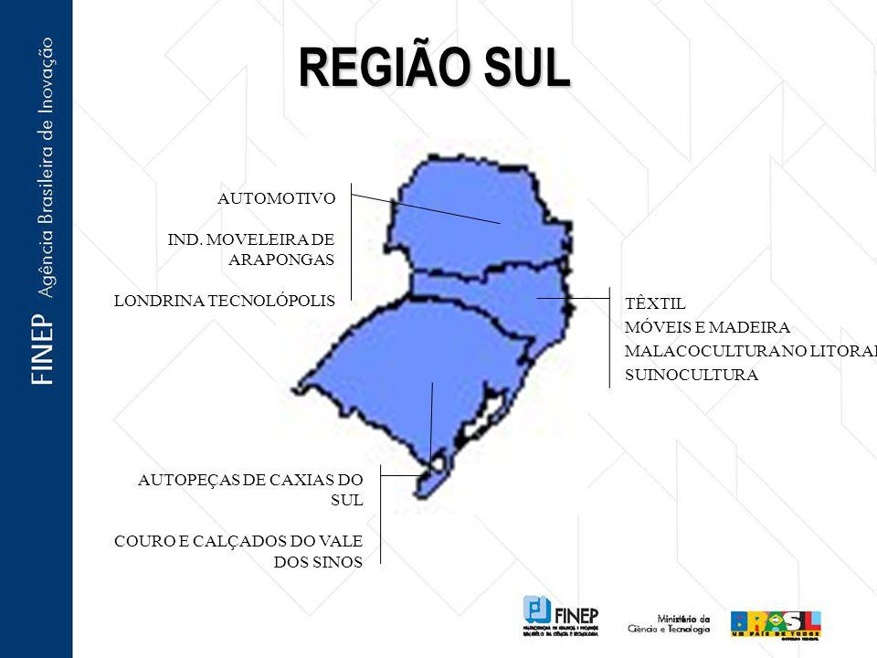 REGIÃO SUL AUTOMOTIVO IND.
