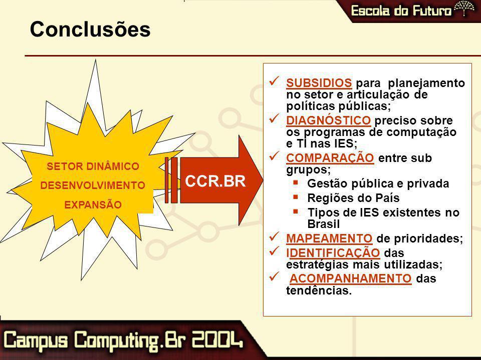 Conclusões SUBSIDIOS para planejamento no setor e articulação de políticas públicas; DIAGNÓSTICO preciso sobre os programas de computação e TI nas IES; COMPARAÇÃO entre sub grupos;  Gestão pública e privada  Regiões do País  Tipos de IES existentes no Brasil MAPEAMENTO de prioridades; IDENTIFICAÇÃO das estratégias mais utilizadas; ACOMPANHAMENTO das tendências.