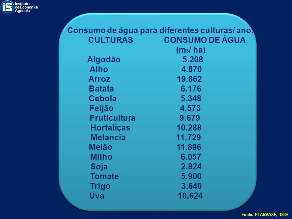 Consumo de água para diferentes culturas/ ano. CULTURAS CONSUMO DE ÁGUA (m 3 / ha) Algodão 5.208 Alho 4.870 Arroz 19.862 Batata 6.176 Cebola 5.348 Fei