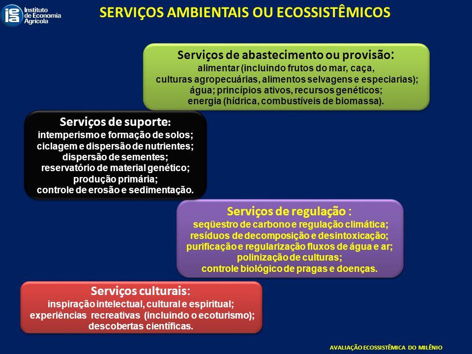 Serviços culturais : inspiração intelectual, cultural e espiritual; experiências recreativas (incluindo o ecoturismo); descobertas científicas. Serviç