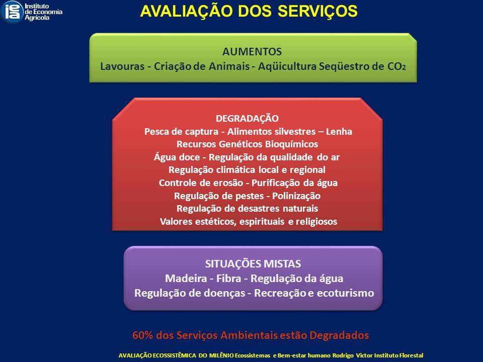 SITUAÇÕES MISTAS Madeira - Fibra - Regulação da água Regulação de doenças - Recreação e ecoturismo SITUAÇÕES MISTAS Madeira - Fibra - Regulação da águ