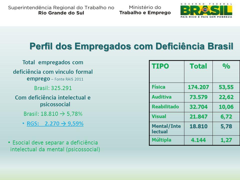 Perfil dos Empregados com Deficiência Brasil TIPOTotal% Física174.20753,55 Auditiva73.57922,62 Reabilitado32.70410,06 Visual21.8476,72 Mental/Inte lec