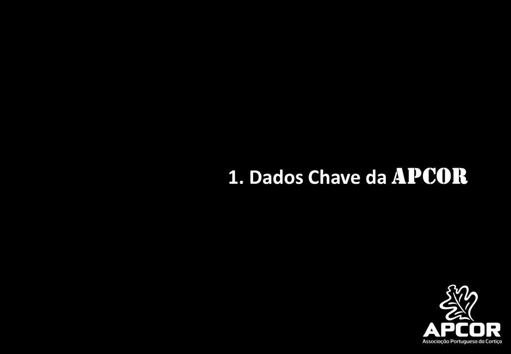 1. Dados Chave da APCOR