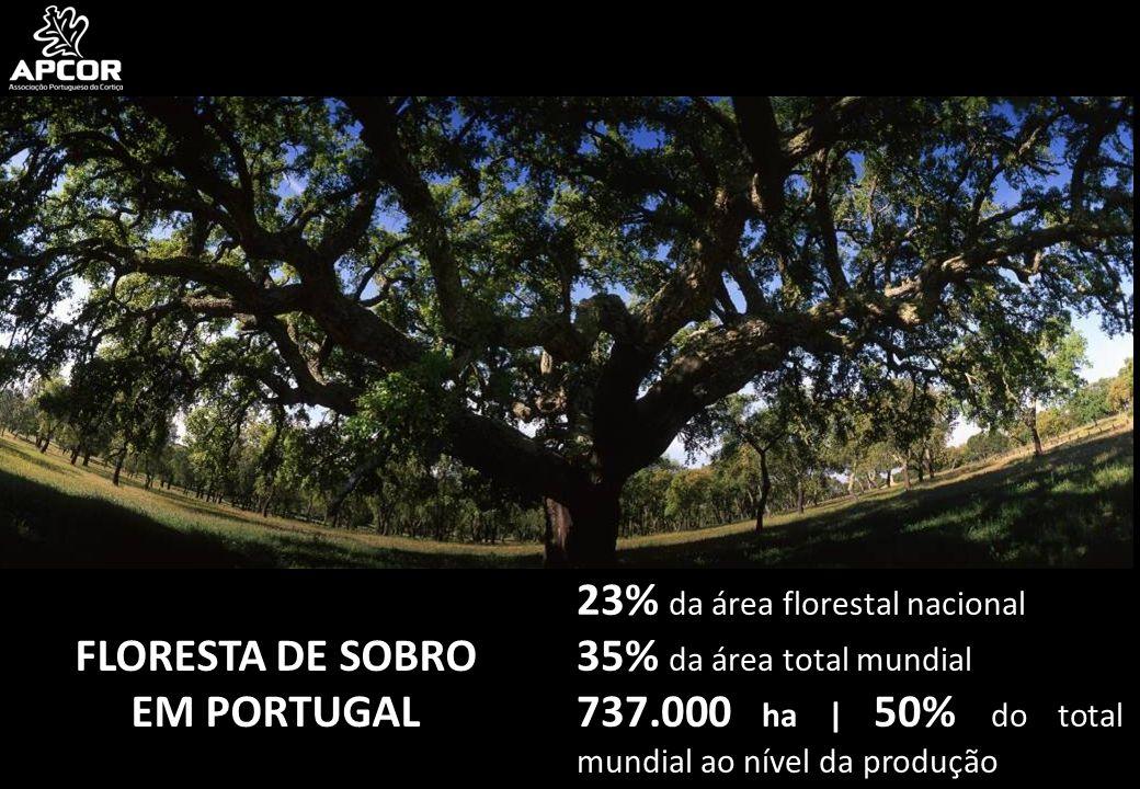 23% da área florestal nacional 35% da área total mundial 737.000 ha | 50% do total mundial ao nível da produção FLORESTA DE SOBRO EM PORTUGAL