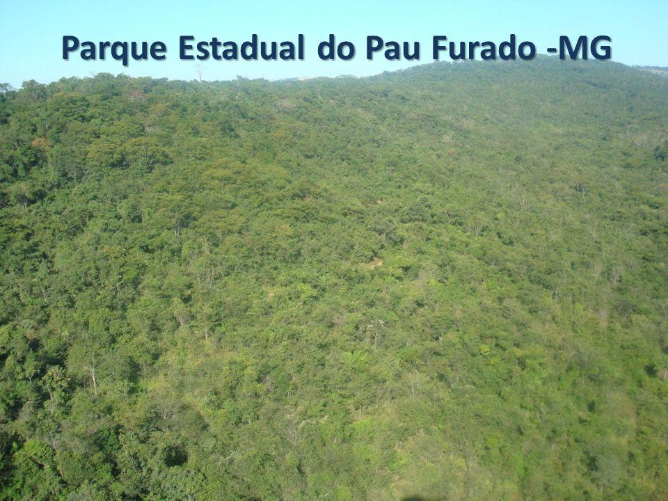 Apresentação: A implantação do Parque Estadual do Pau Furado foi uma medida compensatória aos impactos provocados pela implantação do Complexo Energético Amador Aguiar.
