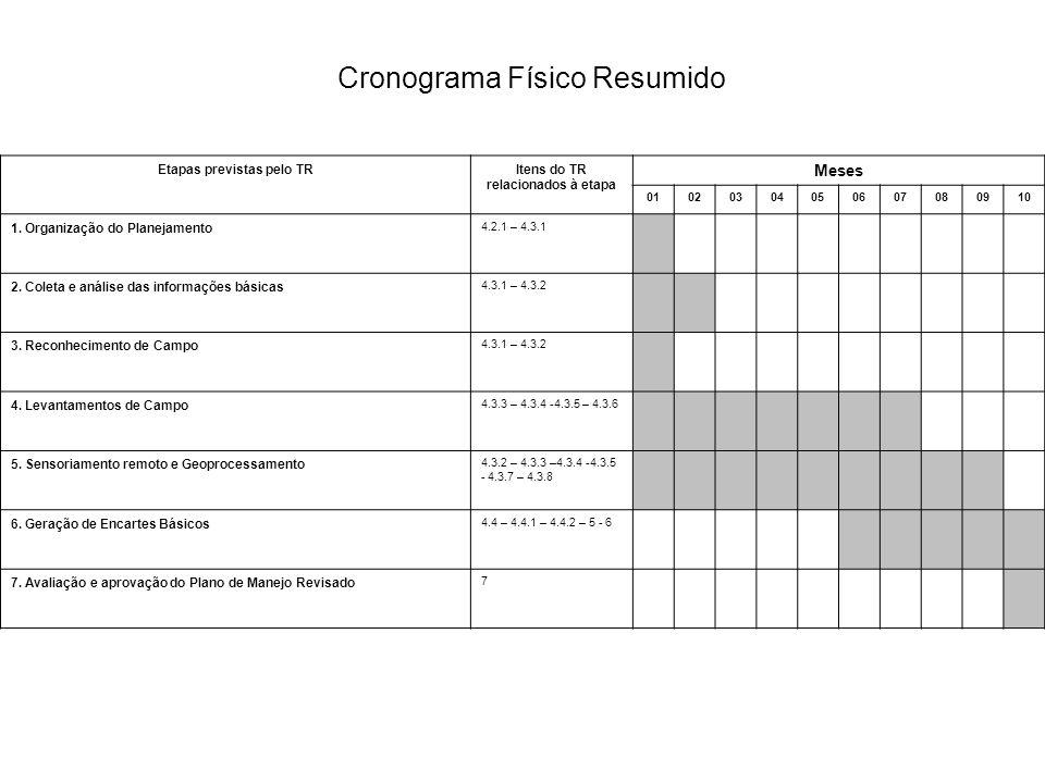 Cronograma Físico Resumido Etapas previstas pelo TRItens do TR relacionados à etapa Meses 01020304050607080910 1.