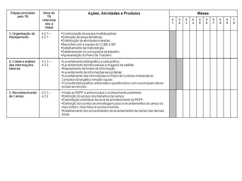 Etapas previstas pelo TR Itens do TR relaciona dos à etapa Ações, Atividades e ProdutosMeses 0101 0202 0303 0404 0505 0606 0707 0808 0909 1010 1.