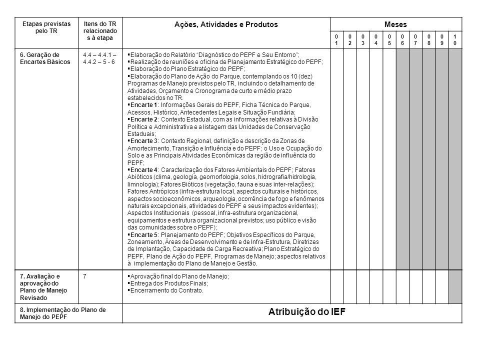 Etapas previstas pelo TR Itens do TR relacionado s à etapa Ações, Atividades e ProdutosMeses 0101 0202 0303 0404 0505 0606 0707 0808 0909 1010 6.
