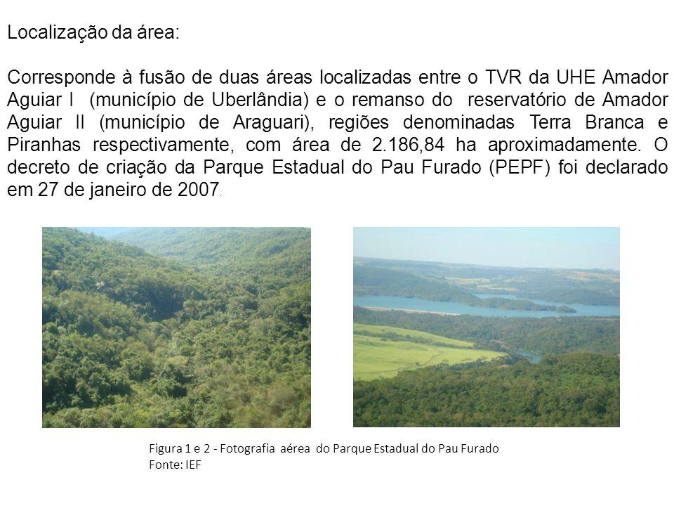 Localização da área: Corresponde à fusão de duas áreas localizadas entre o TVR da UHE Amador Aguiar I (município de Uberlândia) e o remanso do reservatório de Amador Aguiar II (município de Araguari), regiões denominadas Terra Branca e Piranhas respectivamente, com área de 2.186,84 ha aproximadamente.