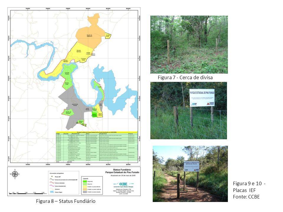 Objetivos do Plano de Manejo  Levar o Parque Estadual do Pau Furado (PEPF) a cumprir os objetivos estabelecidos na sua criação;  Definir os objetivos específicos de manejo, orientando a gestão do PEPF.
