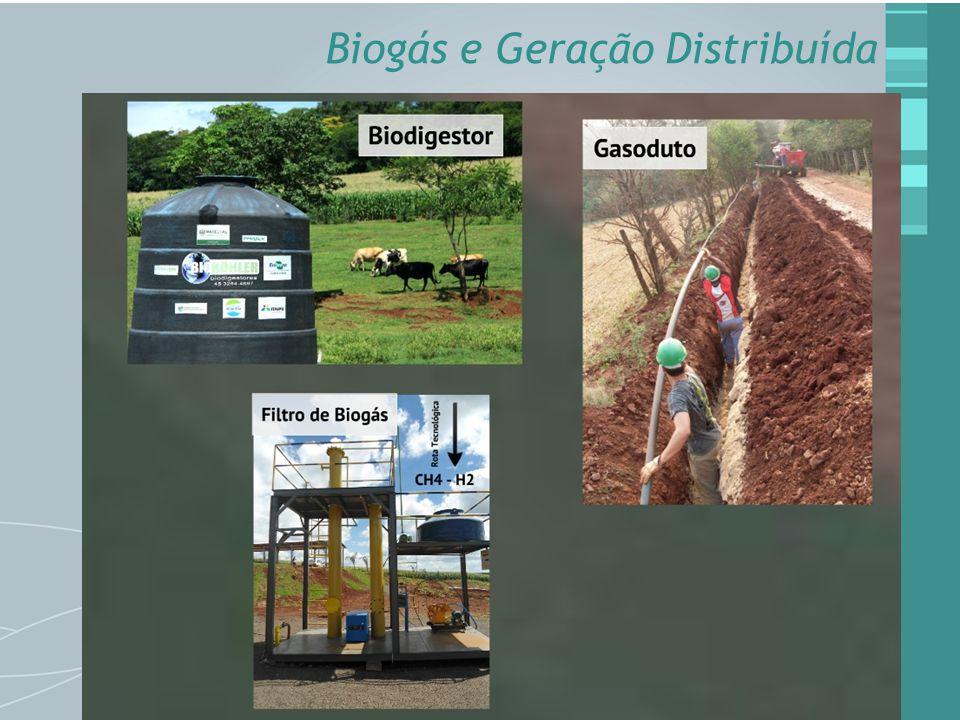 Biogás e Geração Distribuída