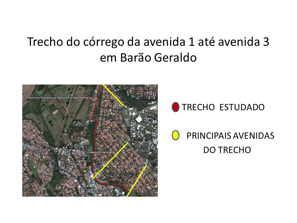 Trecho do córrego da avenida 1 até avenida 3 em Barão Geraldo TRECHO ESTUDADO PRINCIPAIS AVENIDAS DO TRECHO